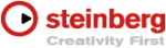 steinberg-creativity-first